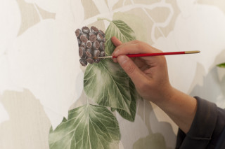 Illustration Botanische Kunst